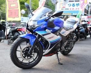 GSX250S_3940