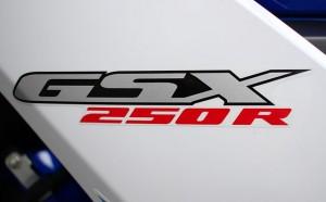 SGX250R_5